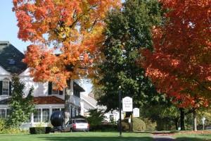 Lenox Main Street Fall 2012