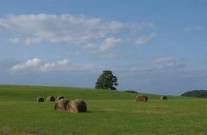 Richmond. MA Farm
